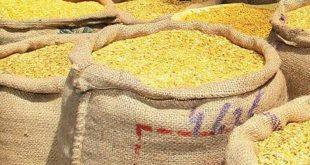 Odisha govt sales dal