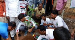Odisha To Regenerate 20 lakh Ha Degradable Forest Land