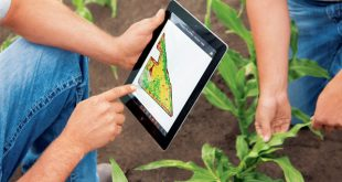 Scientists Develop Mobile App For Farmers