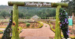 Butterfly Park opens at Daringibadi