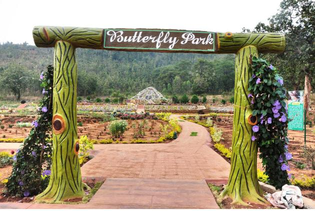 Butterfly Park opens at Daringibadi