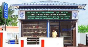 Chicken Fresh Outlet