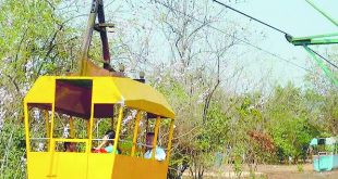 Ropeway service
