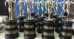 Biju Patnaik Sports Award 2015 Announced