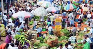 Cyclone threat triggers panic buying
