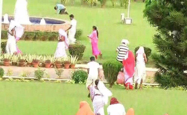 Bee attack inside Odisha Secretariat premises; several injured
