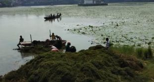 BMC starts de-weeding of Bindusagar in Bhubaneswar