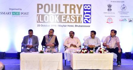 Odisha sets to be self-sufficient in poultry, egg production