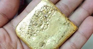 Smuggled gold of Rs 8.20 lakh seized at Bhubaneswar airport