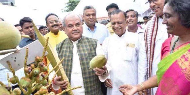 Coconut Development Board celebrates World Coconut Day