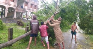Cyclone Bulbul updates: Heavy rainfall in coastal districts, trees uprooted
