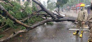 Cyclone Amphan damage in Odisha
