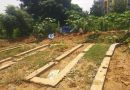 Rainwater harvesting structures